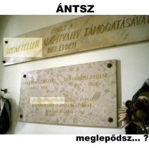 ANTSZ_300